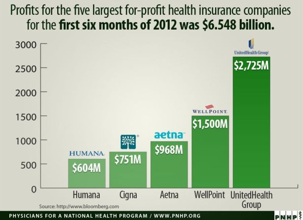 Health Insurance Profits 2012