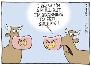 Sheepish_bull_cartoon_05.05.2015_large