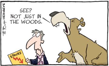 stocks._bear_in_the_woods_01.06.2016