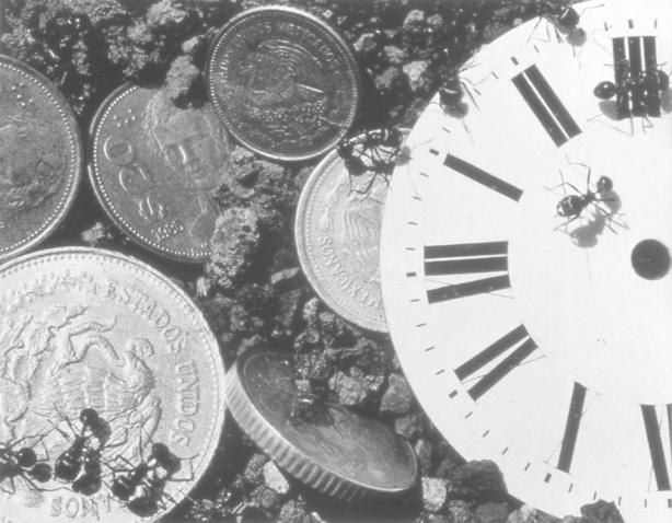 Time-Money_1988_40.25x48.75