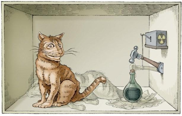 schro%cc%88dingers-cat-3