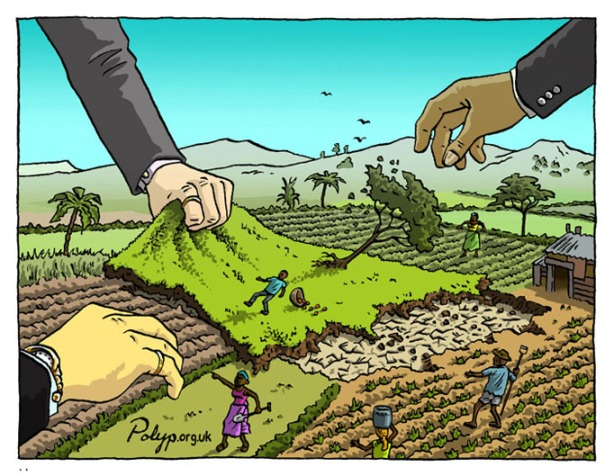 polyp_cartoon_land_grab_farmers