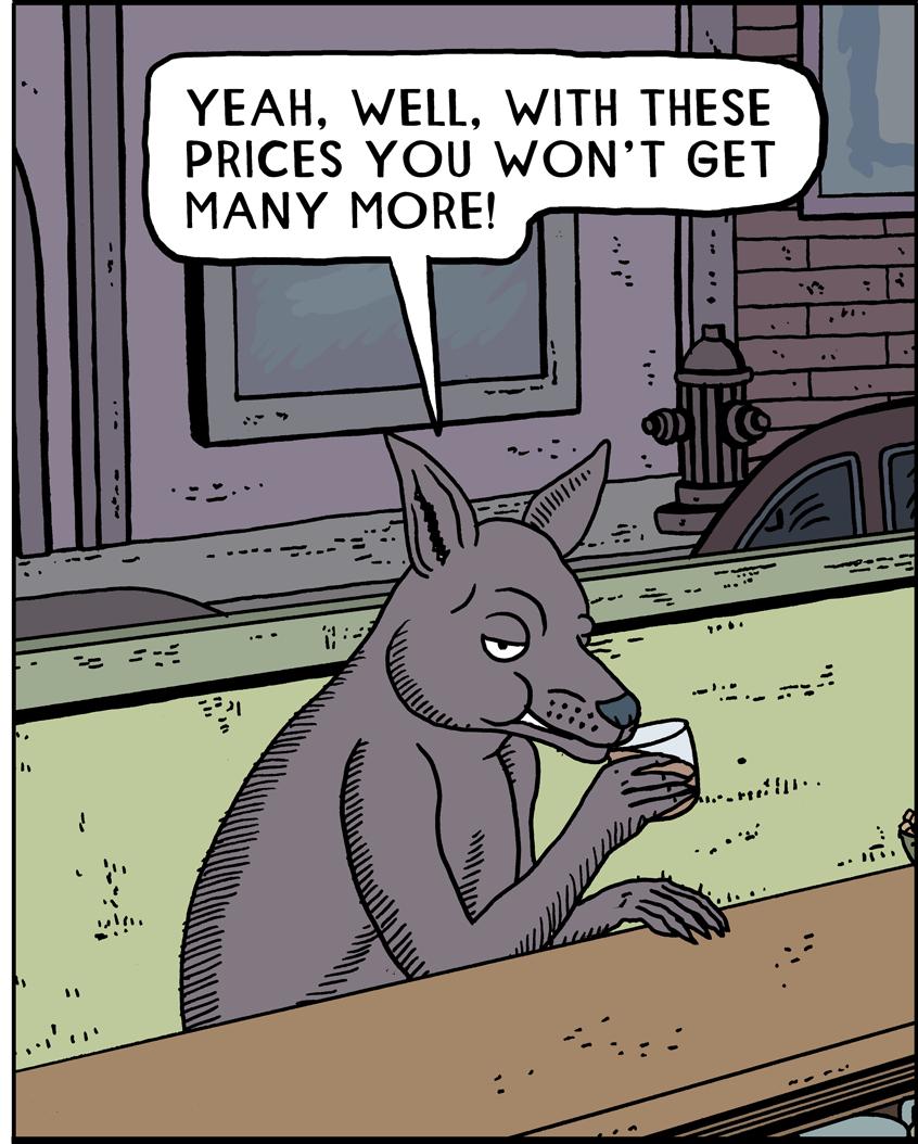 Kangaroo11b