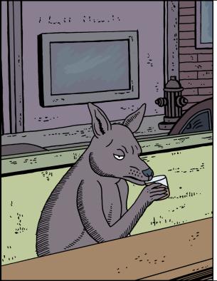 Kangaroo3a